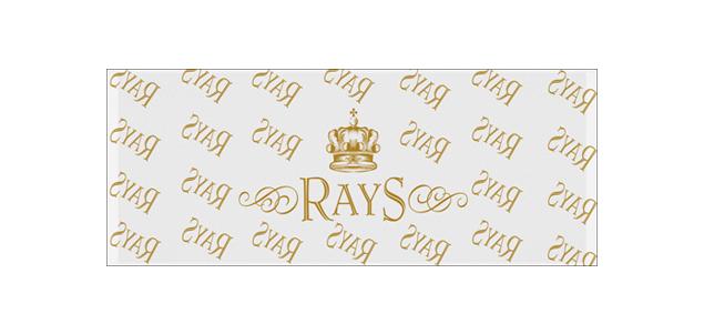 RAYS-4